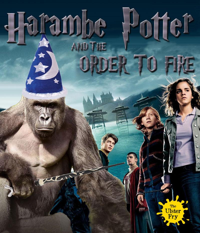 harambe-potter