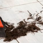 Lough Neagh converted to landfill site to deal with influx of post-lockdown hair clippings